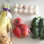 沖縄の野菜は大きくて、安い!お土産もJAファーマーズの購入がオススメです。
