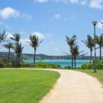 沖縄移住して1年。今までのこと、これからのこと。