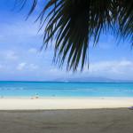 「沖縄に来れば夢が叶う」という言葉のうさん臭さと、その魅力