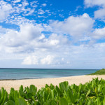 私がとうとう沖縄移住を決意したときのお話