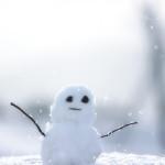 沖縄で39年ぶりに雪!大寒波襲来で「みぞれ」が降った!