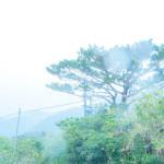 沖縄の梅雨入りはいつ頃?GWには梅雨入りするって本当?