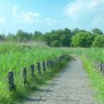 ガイド付きお散歩ツアー「まちまーい」で沖縄を観光しよう